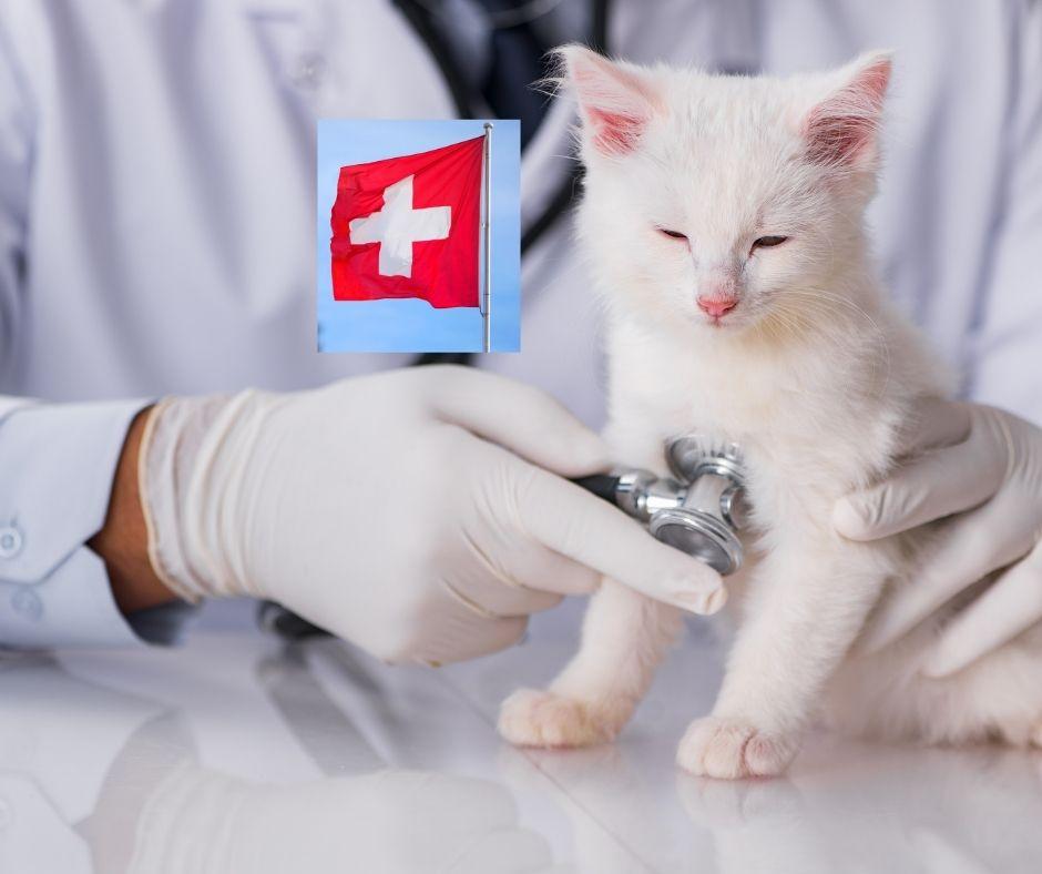tieraerzte-verzeichnis-schweiz